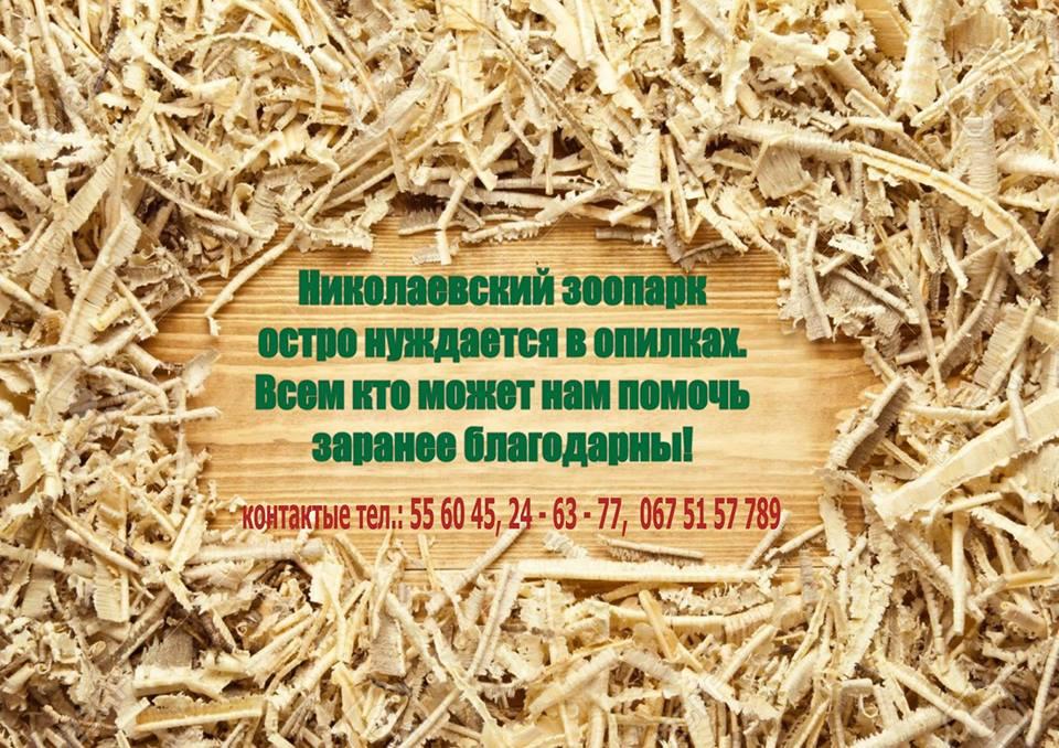 17021354_1078029012325113_4798599791962371667_n